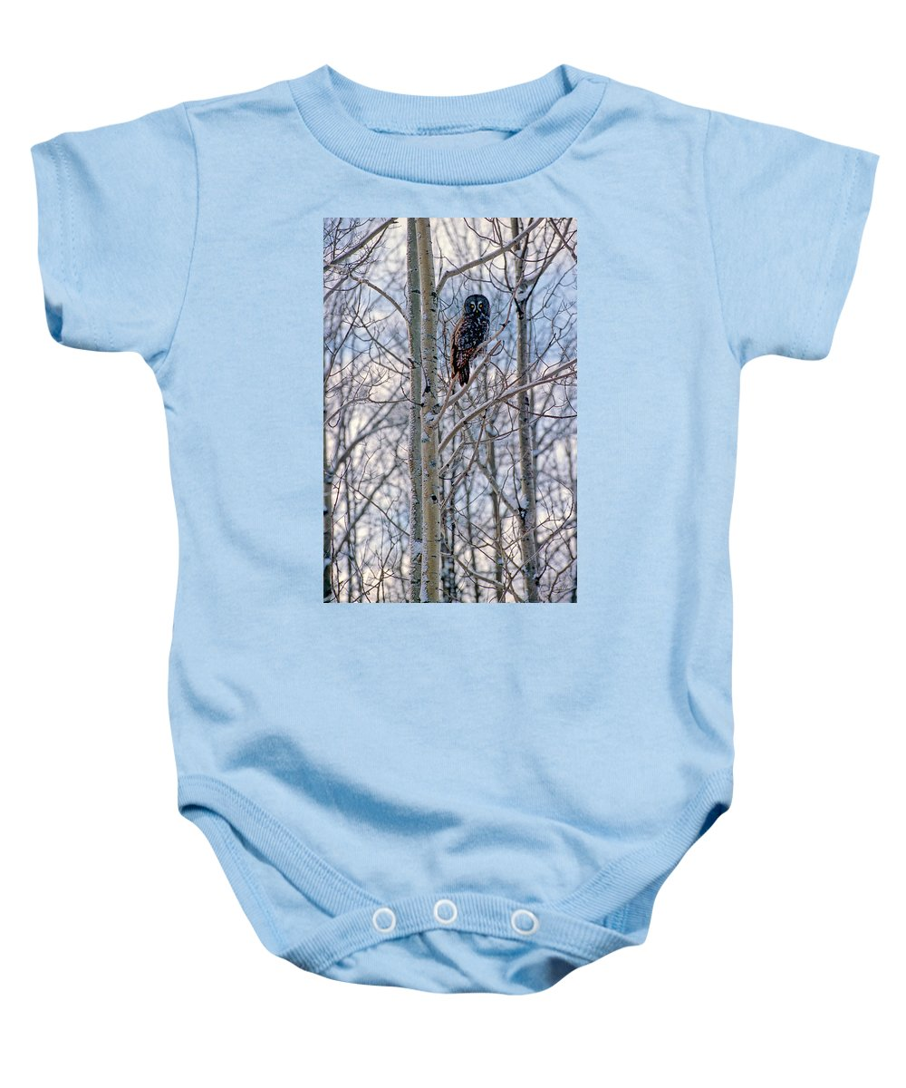 Canada Baby Onesie featuring the photograph Great Grey Owl by Doug Gibbons