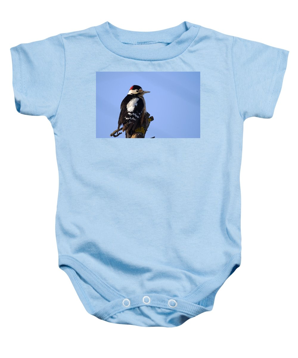 Great Spotted Woodpecker Baby Onesie featuring the photograph Great Spotted Woodpecker Against Blue Sky by Cliff Norton