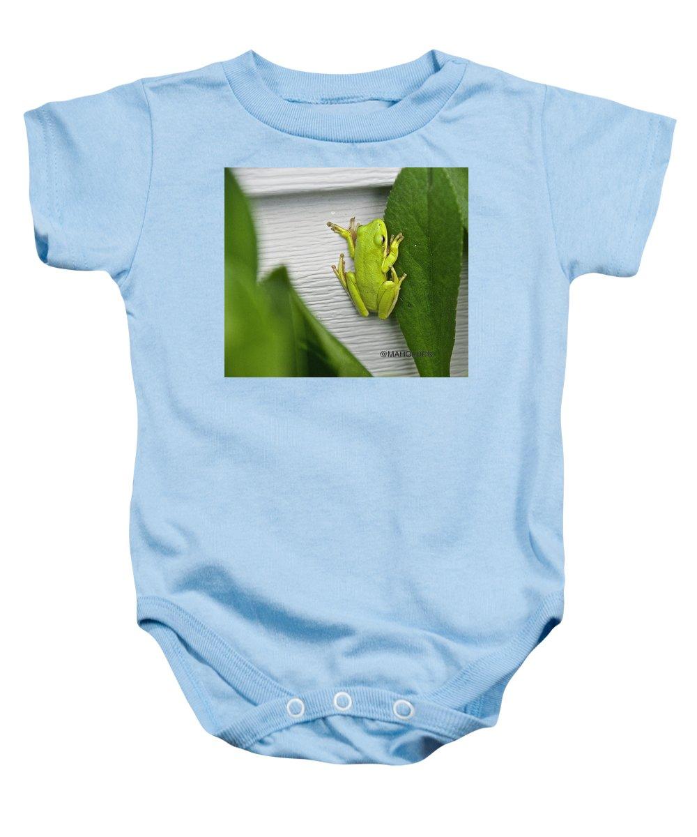 Green Frog Baby Onesie featuring the photograph Green Frog by Mark Holden