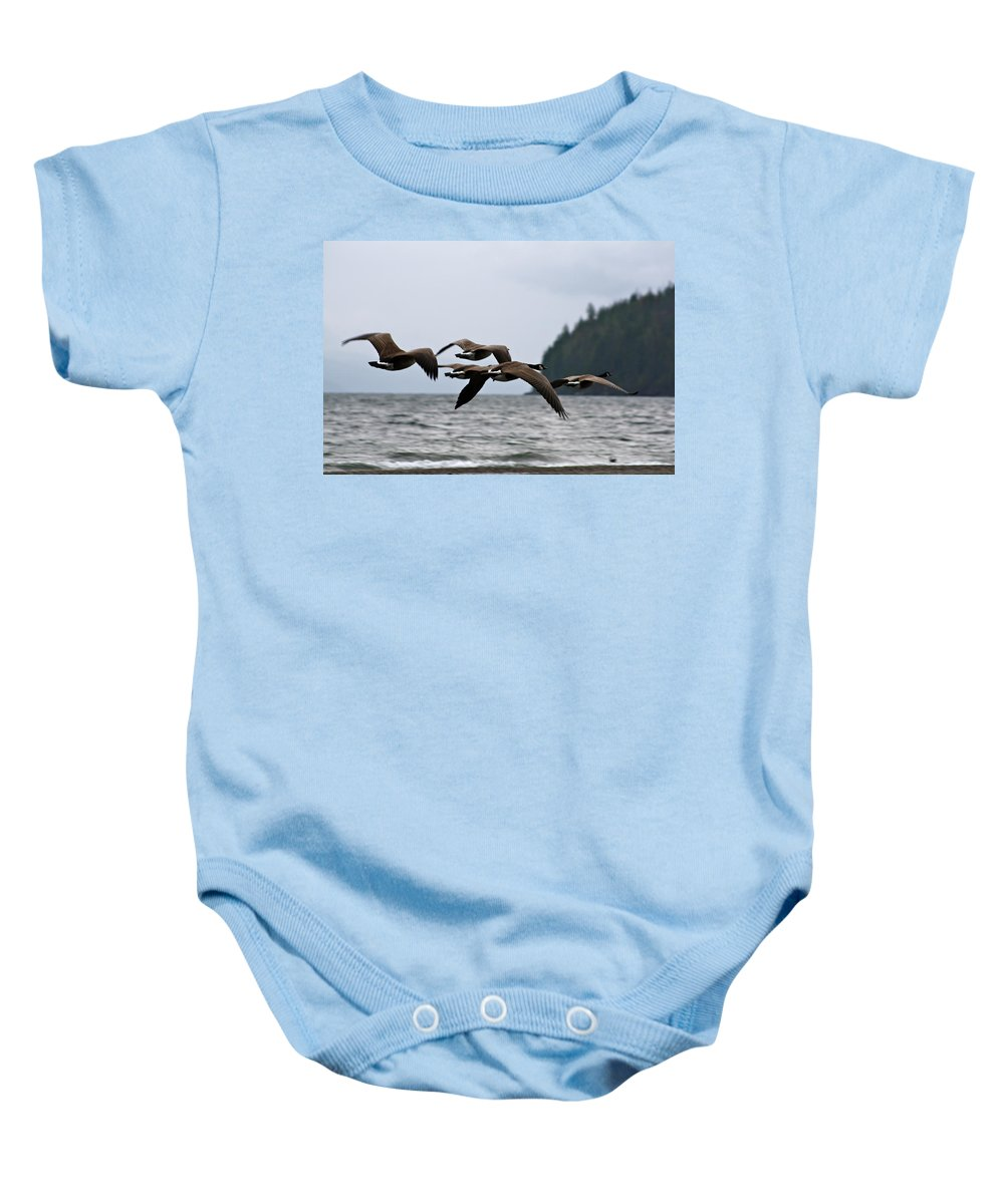 Heading Baby Onesie featuring the photograph Heading South by Cathie Douglas