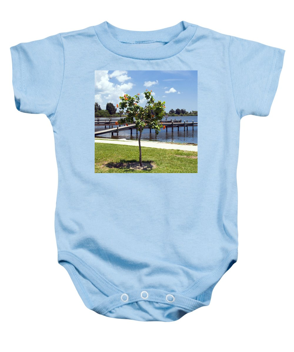Hibiscus; Rosasinensis; Rosa; Sinensis; Rosa-sinensis; Tree; Bush; Shrub; Plant; Flower; Flowers; Fl Baby Onesie featuring the photograph Hibiscus Rosasinensis With Fruit On The Indian River In Florida by Allan Hughes