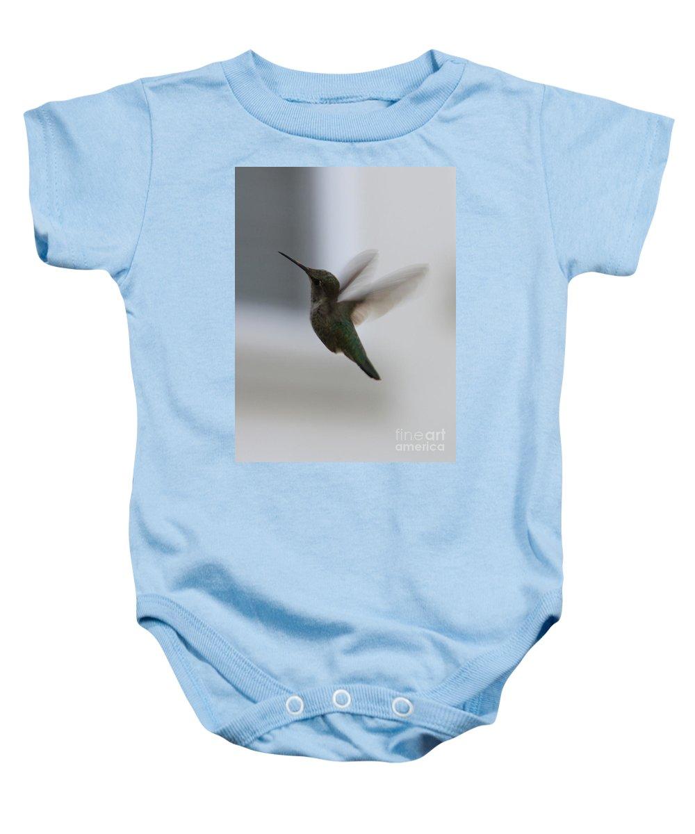 Hummingbird Baby Onesie featuring the photograph Hummingbird In Flight by Carol Groenen