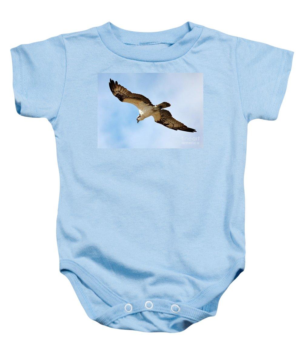 Osprey Baby Onesie featuring the photograph Hunter Osprey by Carol Groenen