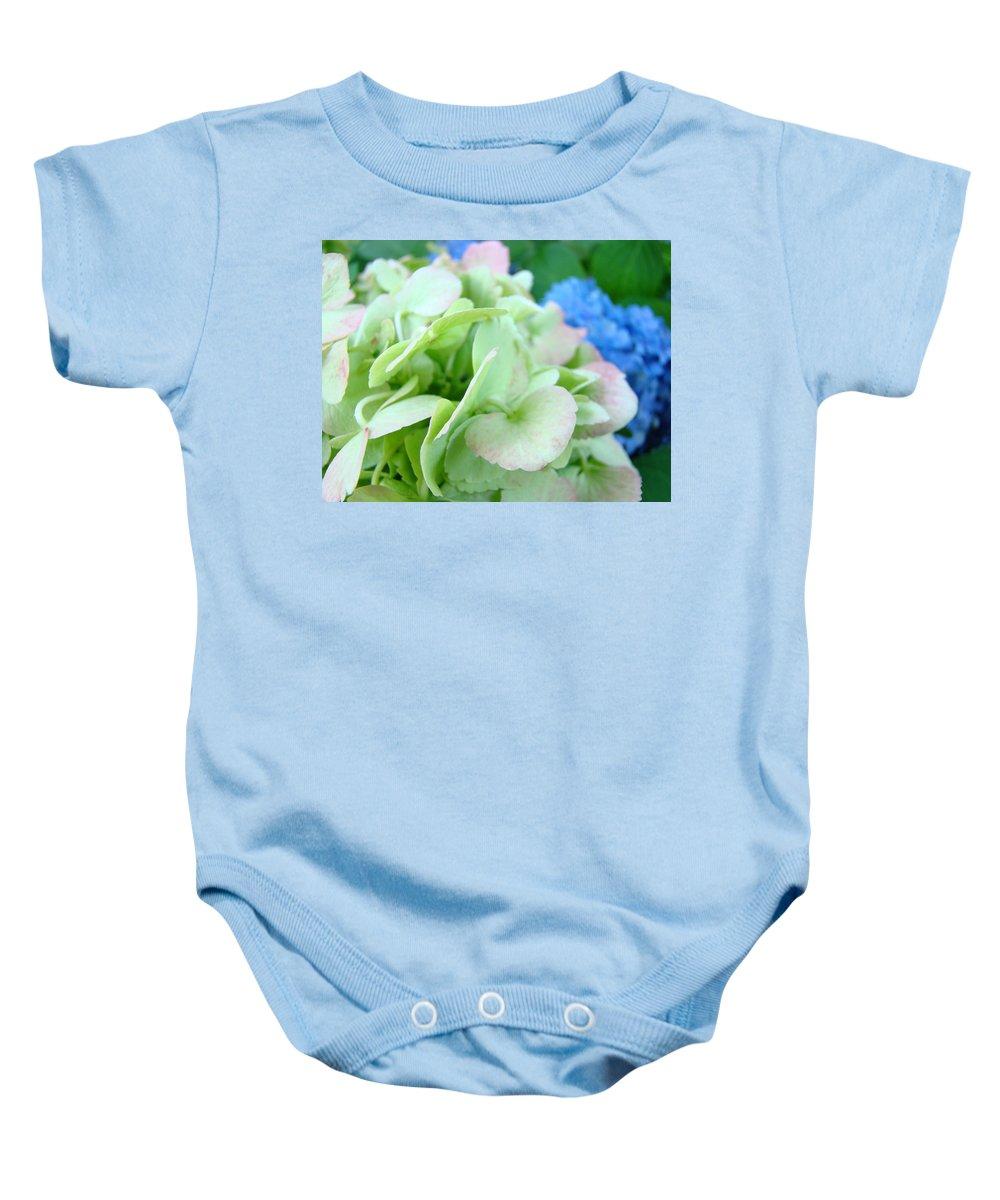Hydrangea Baby Onesie featuring the photograph Hydrangea Flowers Art Prints Floral Gardens Gliclee Baslee Troutman by Baslee Troutman