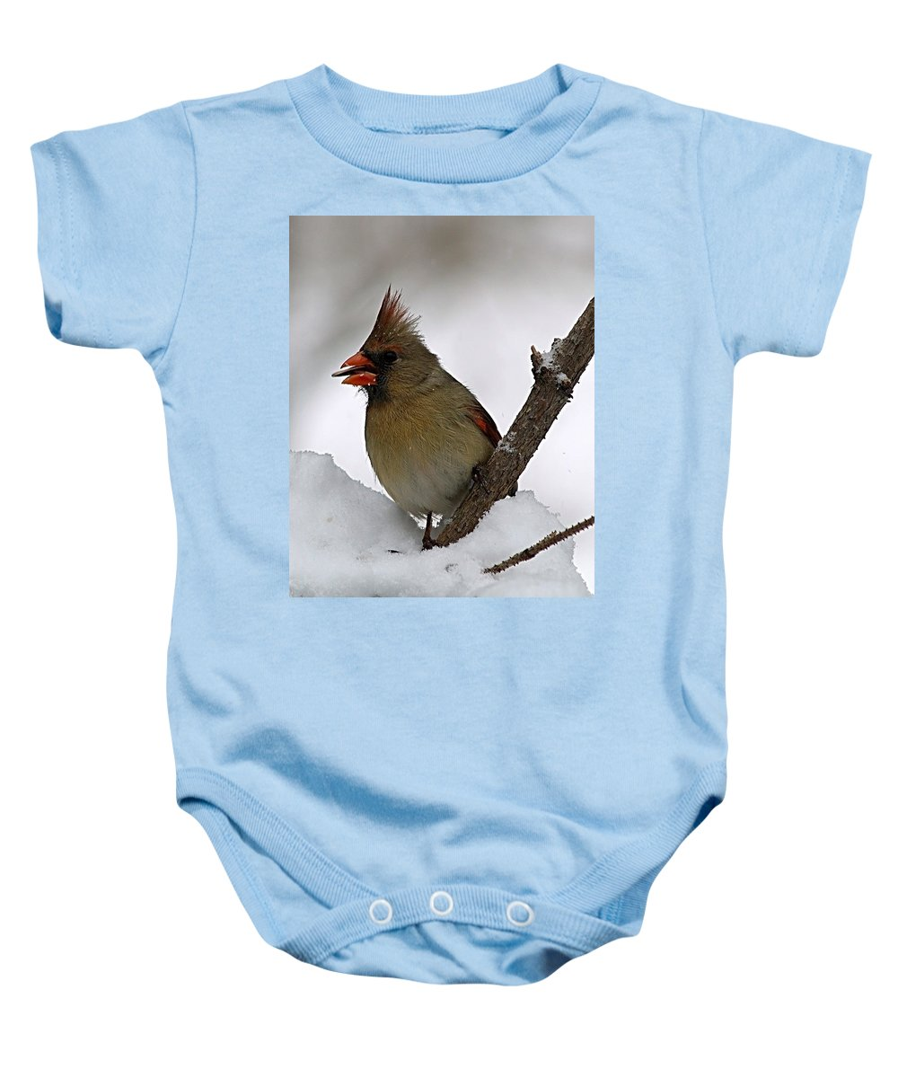 Bird Baby Onesie featuring the photograph I Love Seeds by Gaby Swanson