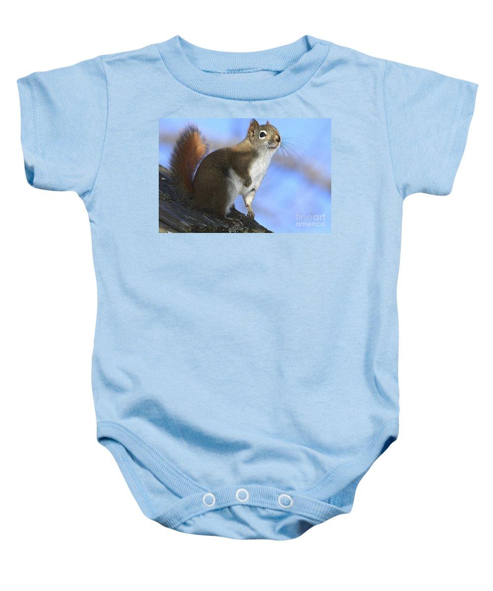 Animal Baby Onesie featuring the photograph I See Sun by Deborah Benoit
