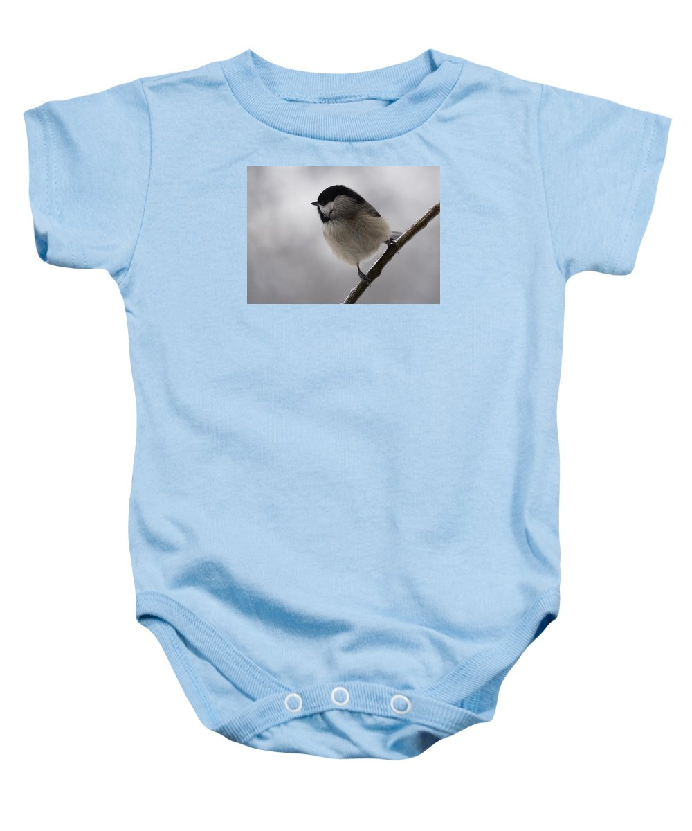 Chickadee Baby Onesie featuring the photograph Icy Limbs by Karen Beasley