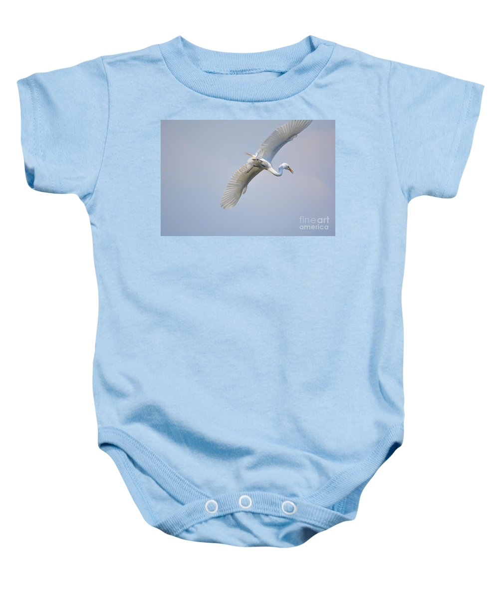 Lake Baby Onesie featuring the photograph Now Where Did I Leave That Nest...in The Wild White Snowy Egrets Photography....photo C by Barb Dalton