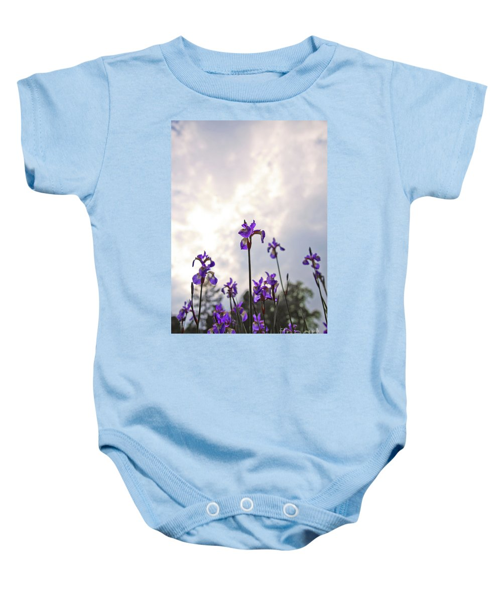 Wildflowers Baby Onesie featuring the photograph Into The Sky 3 by Alex Art and Photo