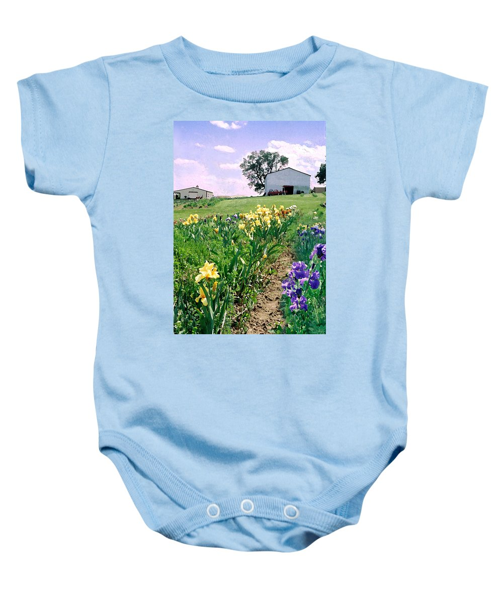 Landscape Painting Baby Onesie featuring the photograph Iris Farm by Steve Karol