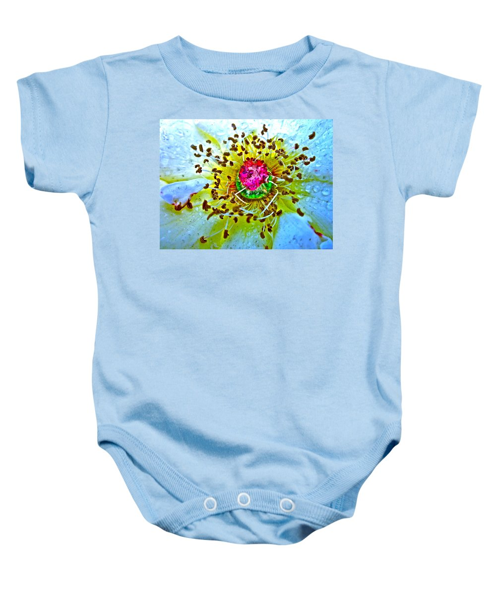 Photograph Of Rose Baby Onesie featuring the photograph Jive by Gwyn Newcombe