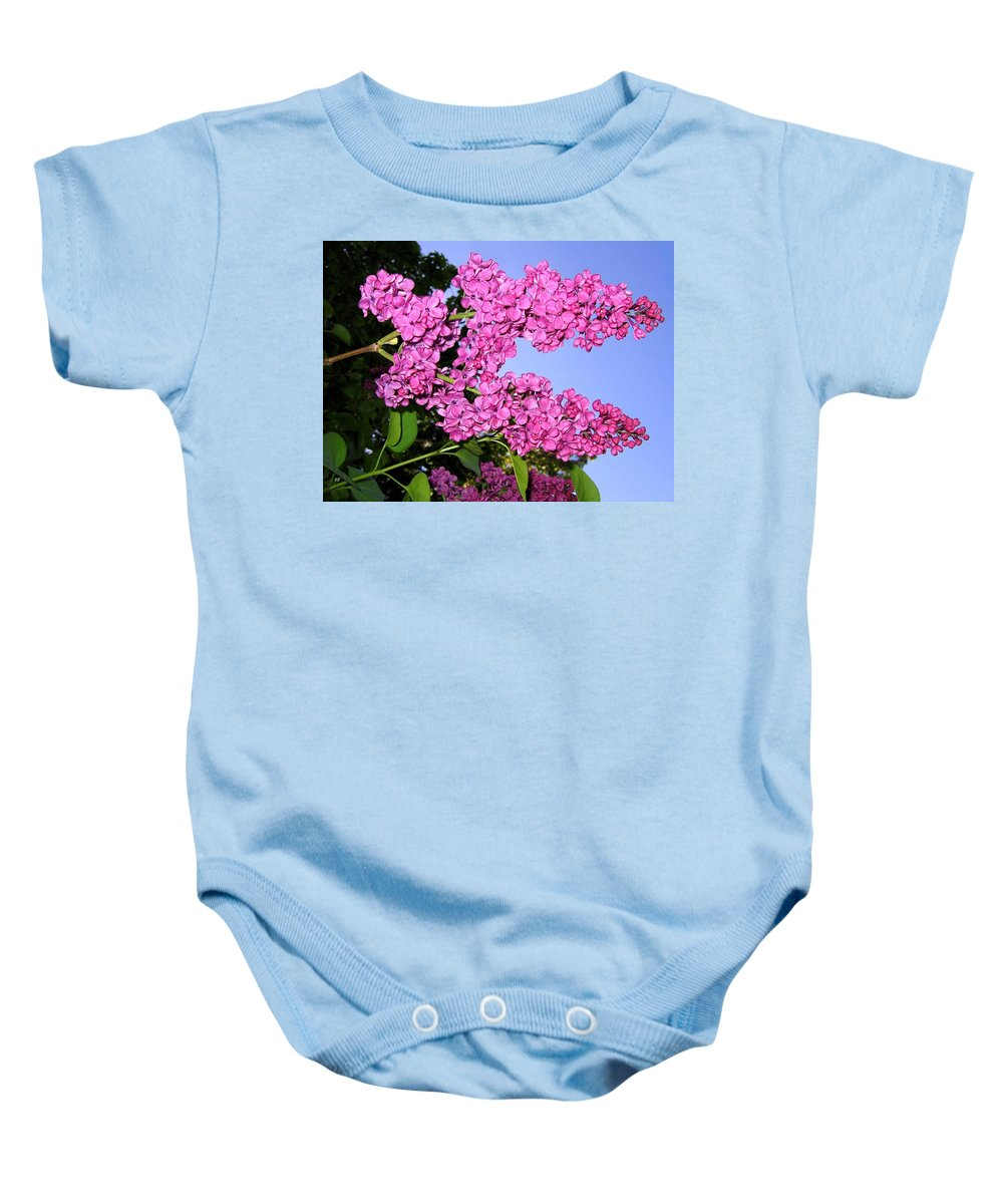 Lilacs Baby Onesie featuring the photograph Lavish Lilacs by Will Borden