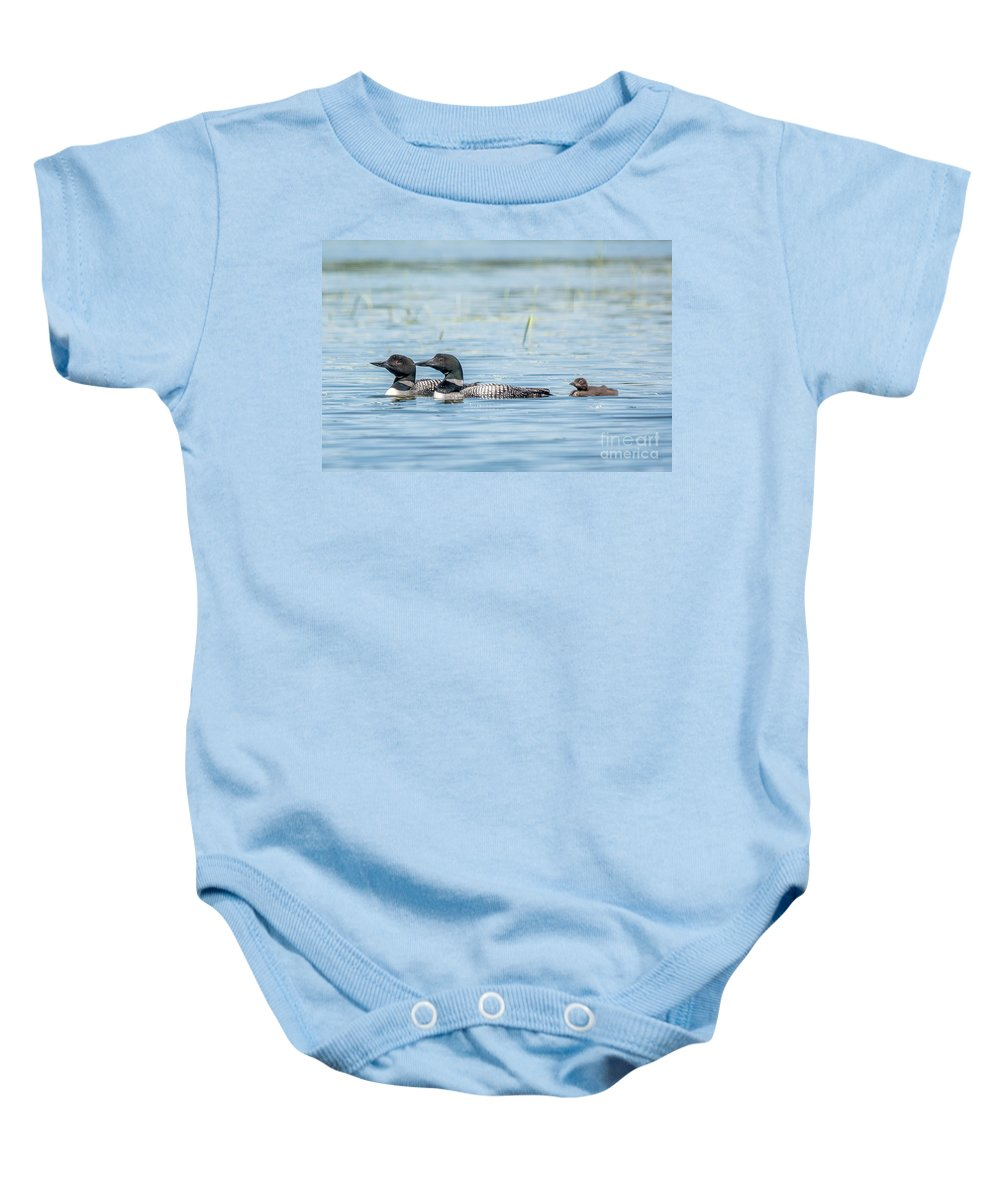 Cheryl Baxter Photography Baby Onesie featuring the photograph Loon Family by Cheryl Baxter