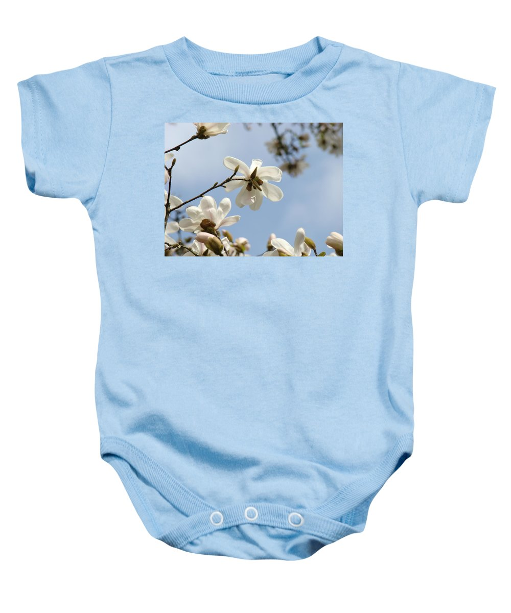 Magnolia Baby Onesie featuring the photograph Magnolia Flowers White Magnolia Tree Art 2 Blue Sky Giclee Prints Baslee Troutman by Baslee Troutman
