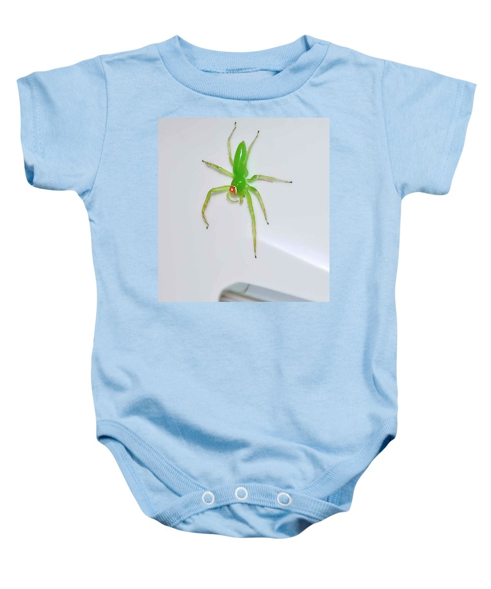 Spider Baby Onesie featuring the photograph Magnolia Green Jumper by DigiArt Diaries by Vicky B Fuller