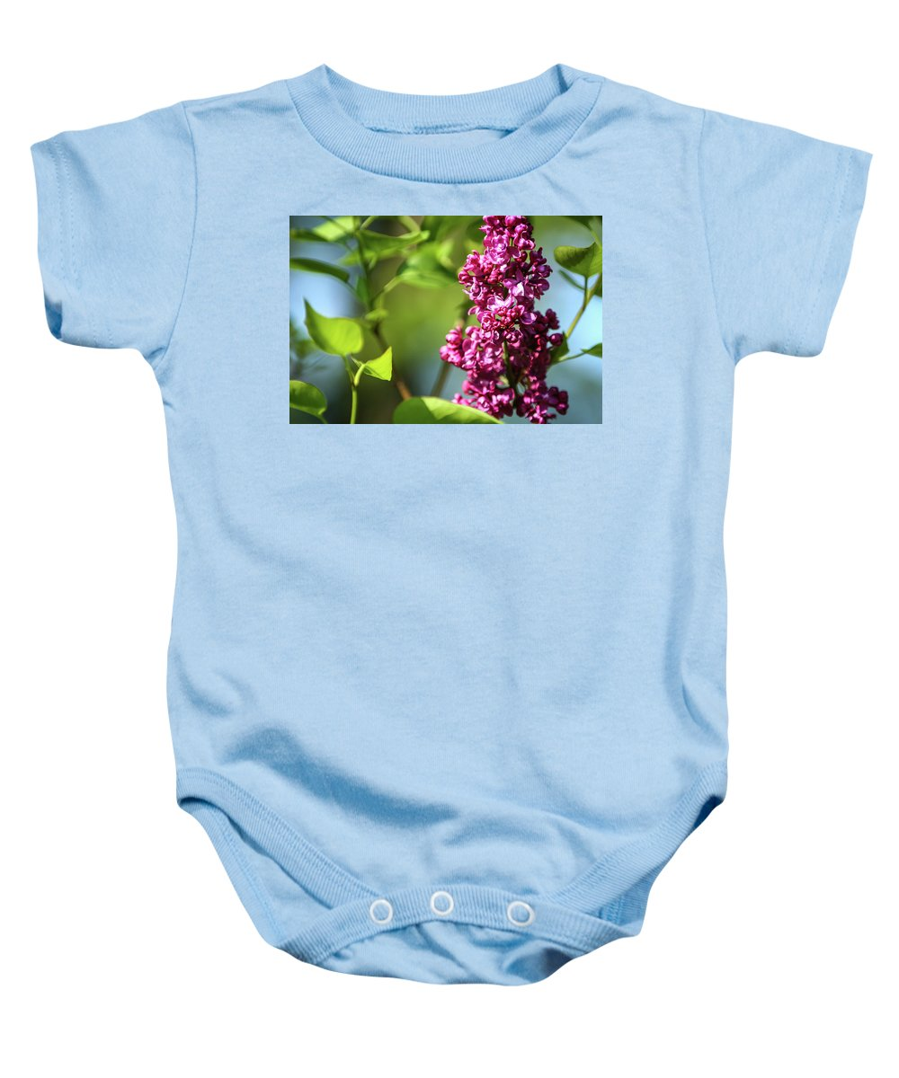 Lilac Baby Onesie featuring the photograph Nymph Named Syringa by Martina Schneeberg-Chrisien