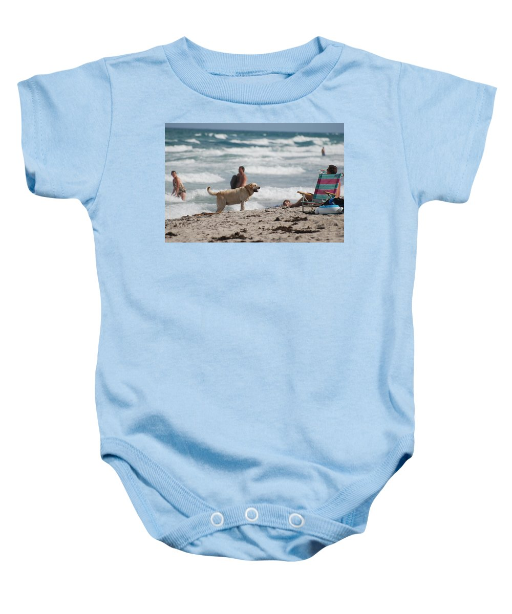 Waves Baby Onesie featuring the photograph Ocean Dog by Rob Hans
