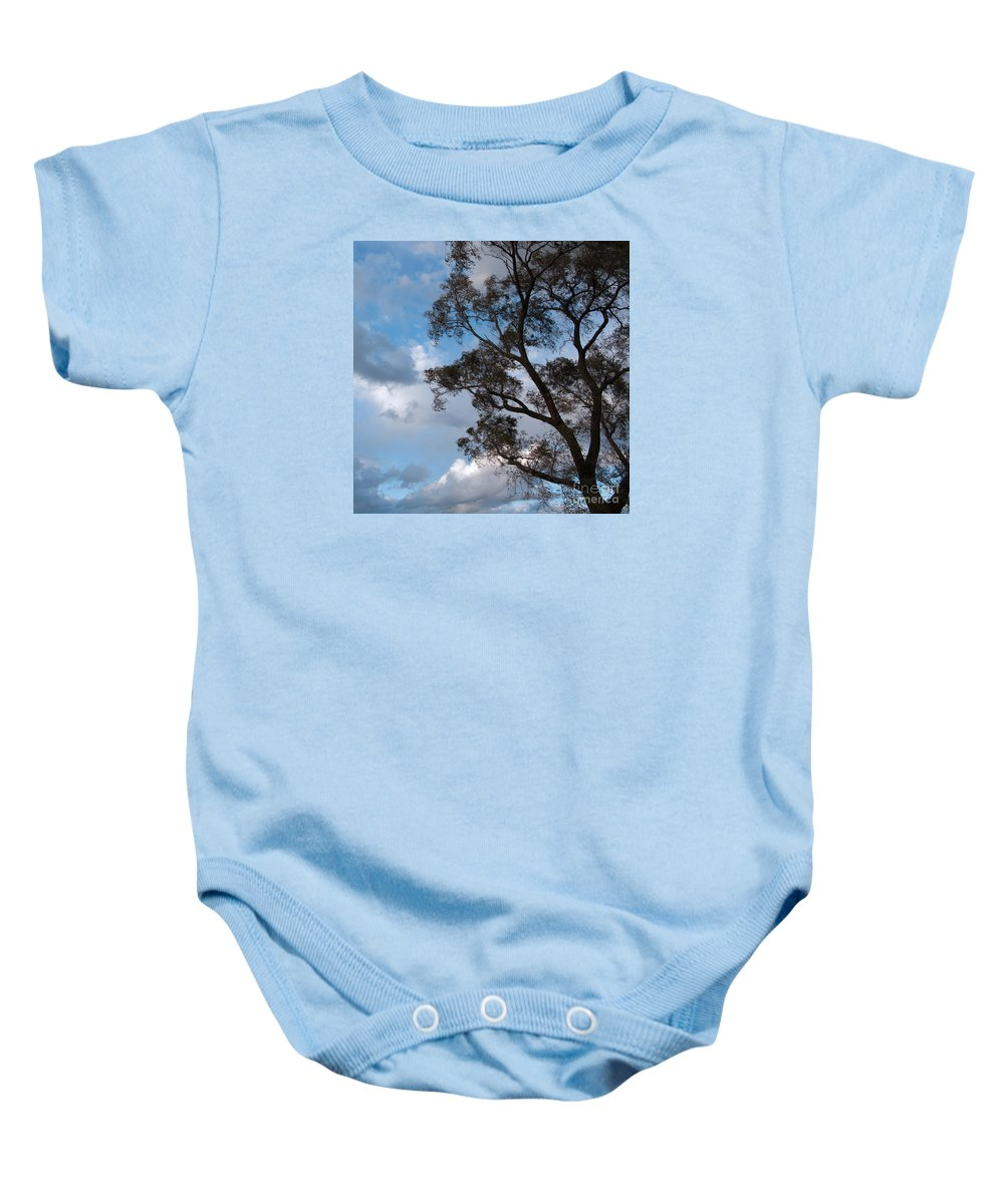 Tree Baby Onesie featuring the photograph On Winds Of Evening by Ann Horn