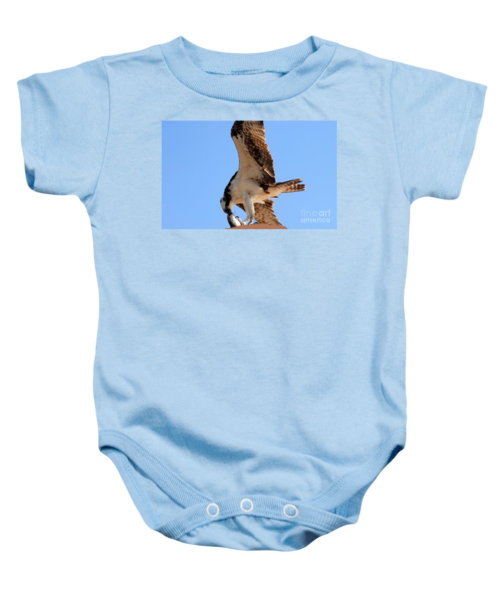 Osprey Baby Onesie featuring the photograph Osprey's Catch by David Lee Thompson