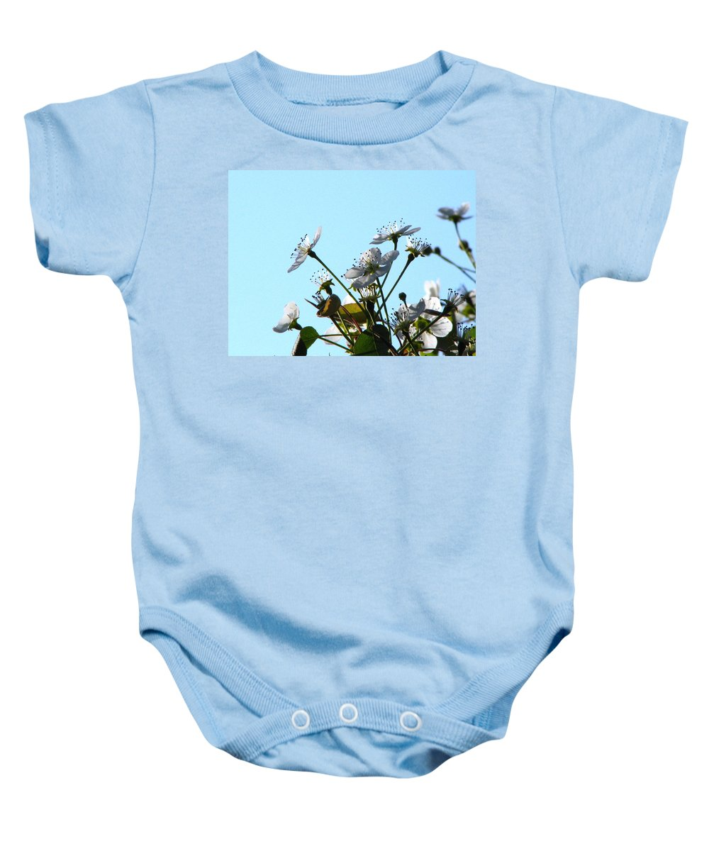 Pear Tree Blossum Baby Onesie featuring the photograph Pear Tree Blossoms 5 by J M Farris Photography
