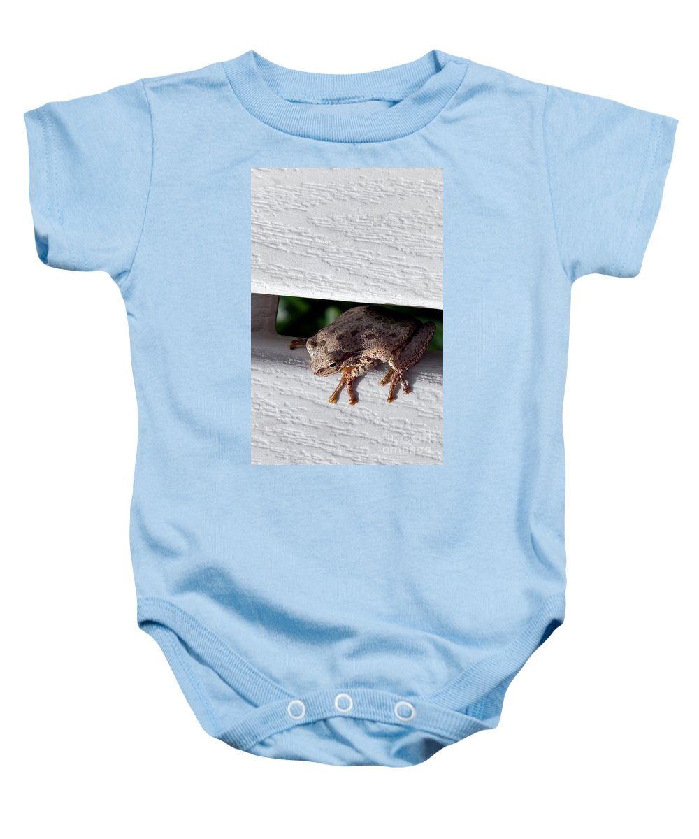 Nature Baby Onesie featuring the photograph Peek A Boo by Skip Willits