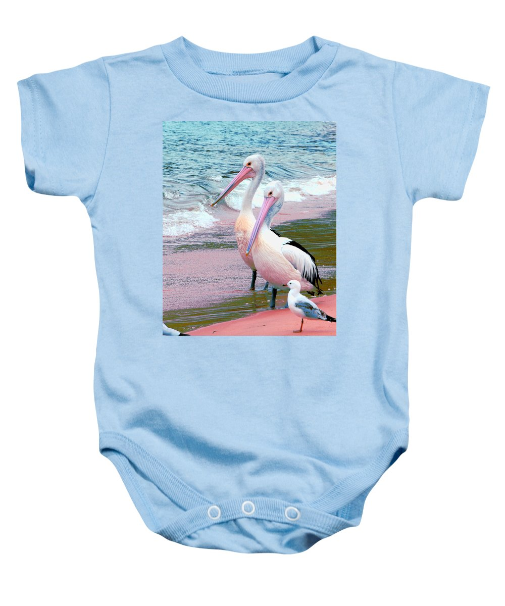 Australia Baby Onesie featuring the photograph Pelicans At Pearl Beach 5.1 by Giro Tavitian