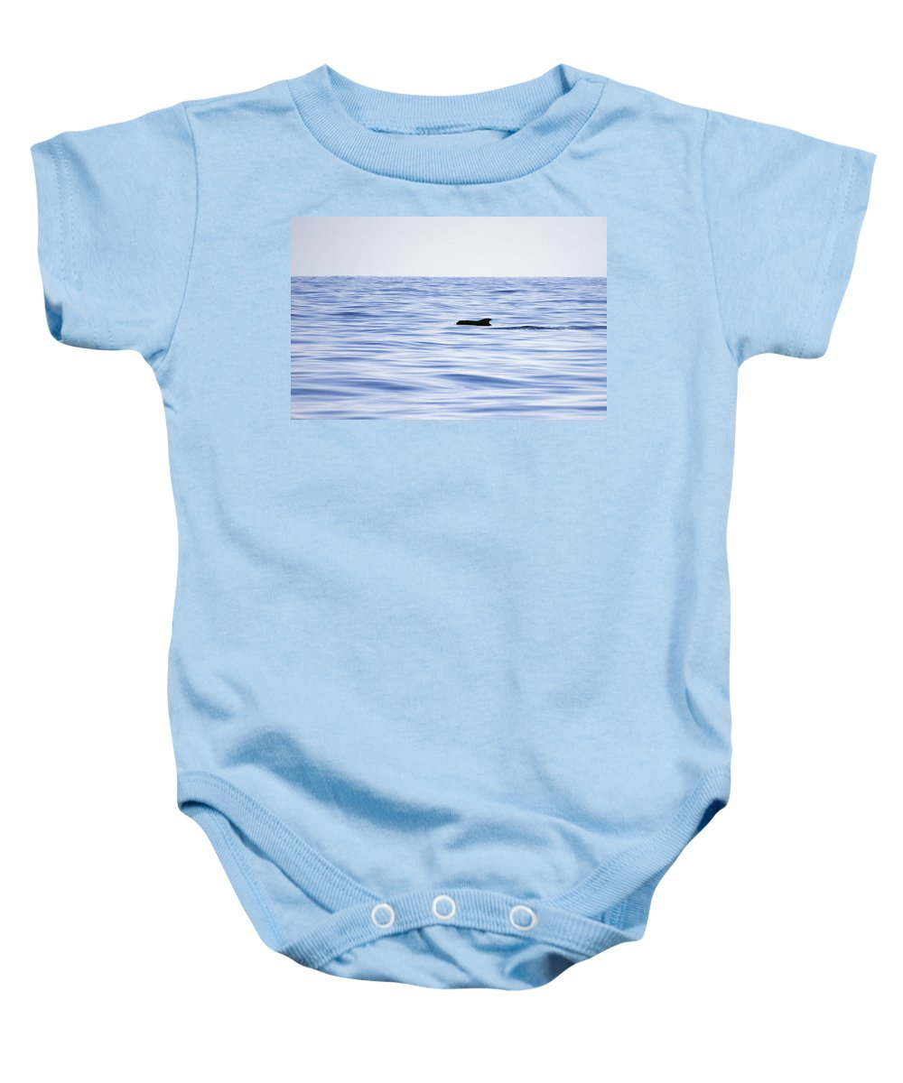 Spain Baby Onesie featuring the photograph Pilot Whales 2 by Jouko Lehto