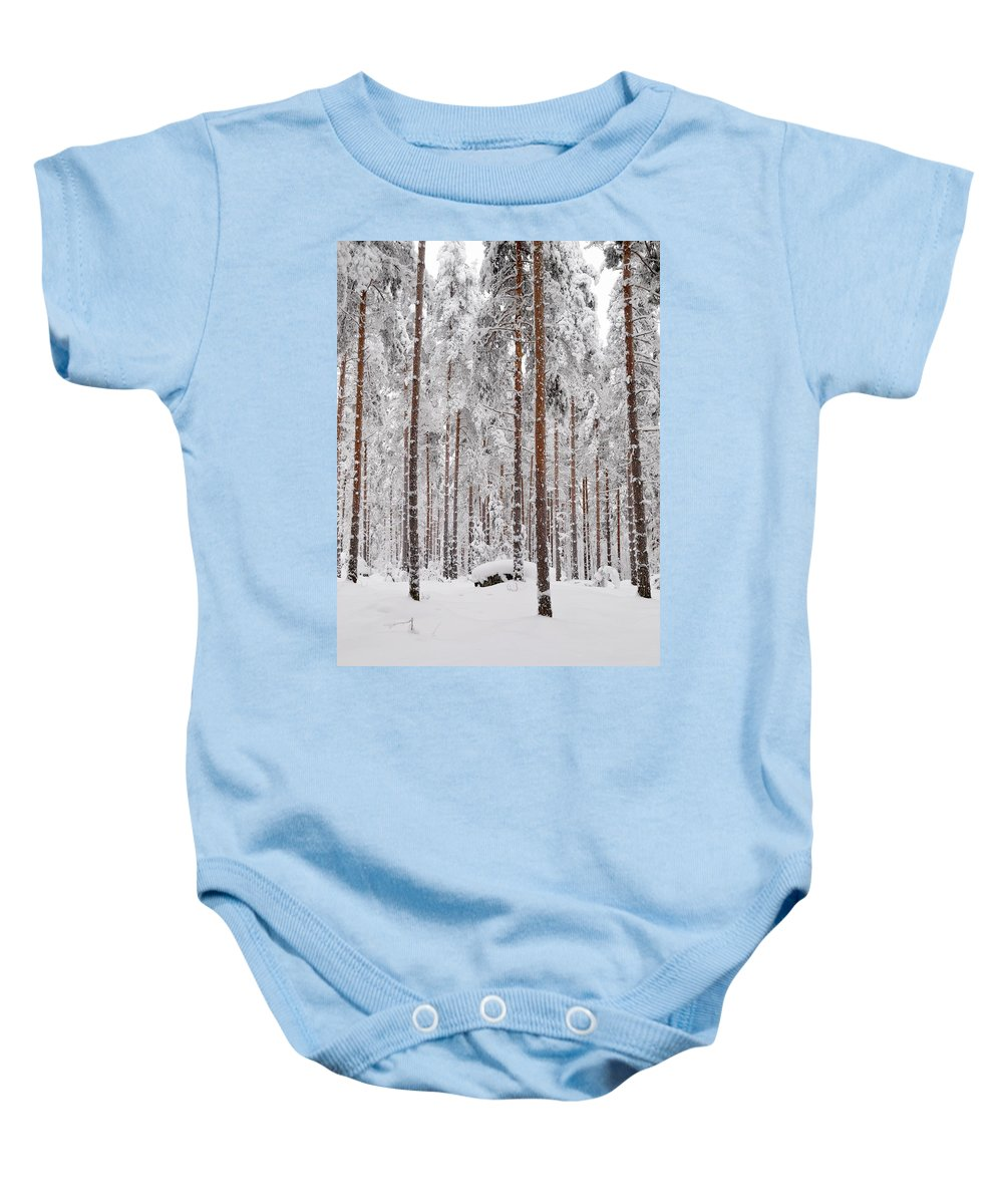 Lehtokukka Baby Onesie featuring the photograph Pine Forest by Jouko Lehto