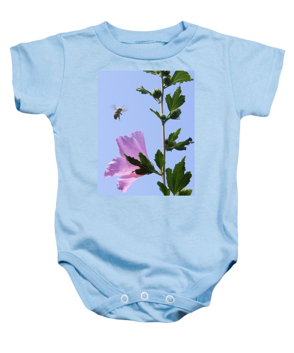 Landscape Baby Onesie featuring the photograph Pollen Nation by Ed Smith
