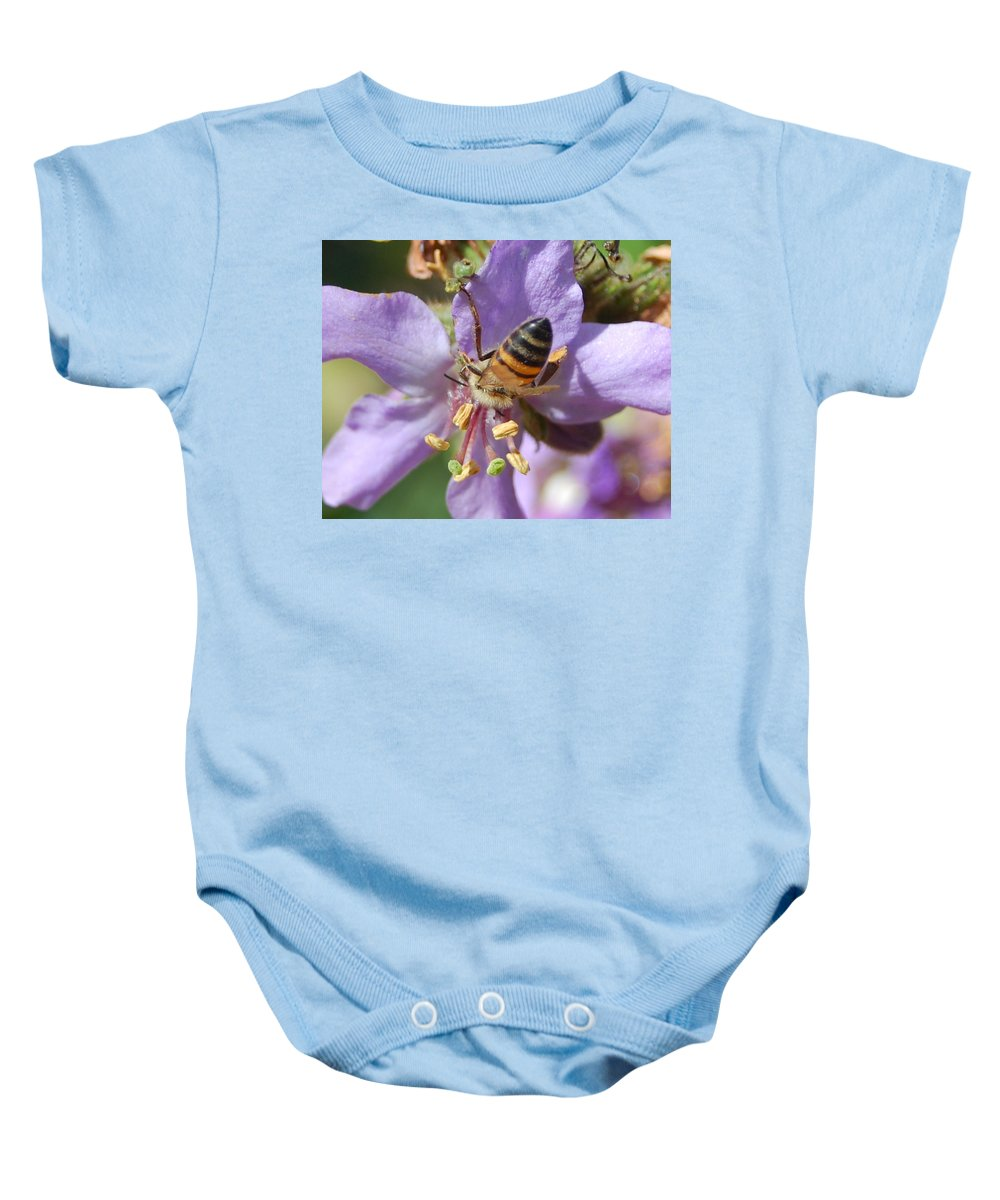 Bees Baby Onesie featuring the photograph Pollinating 4 by Amy Fose