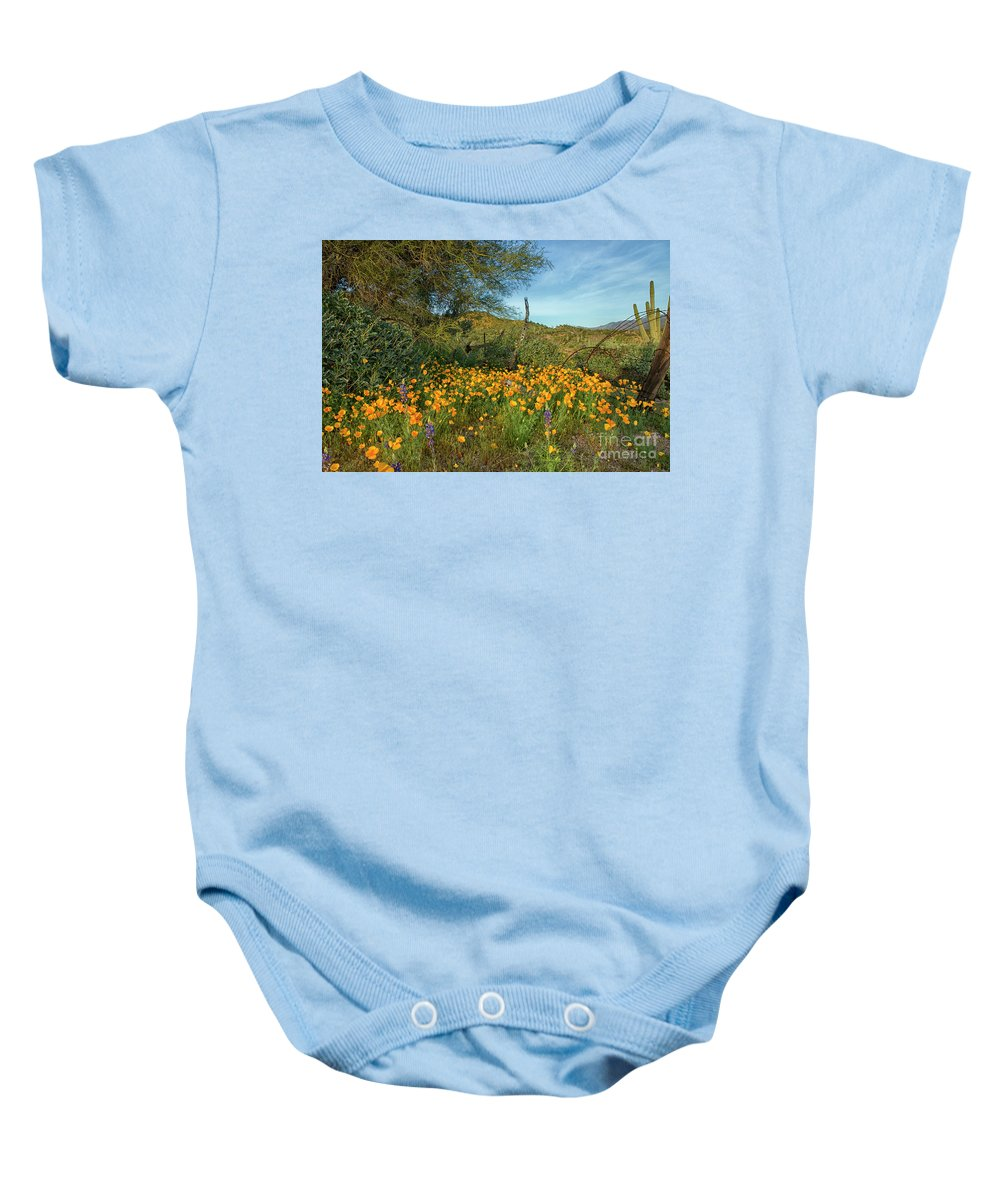 Poppies Baby Onesie featuring the photograph Poppies Abound by Tom Kelly