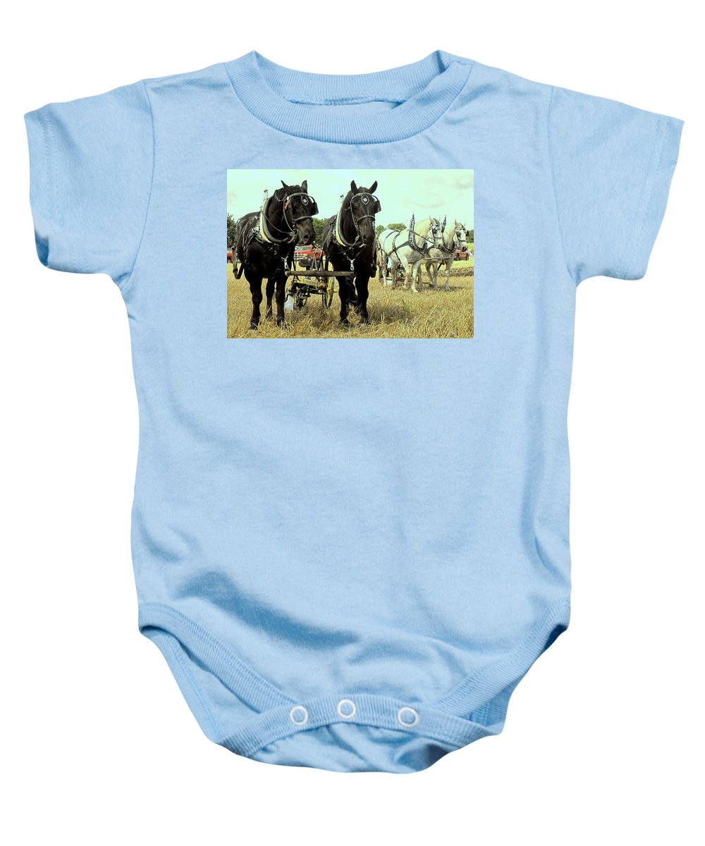 Horse Baby Onesie featuring the photograph Posing by Ian MacDonald