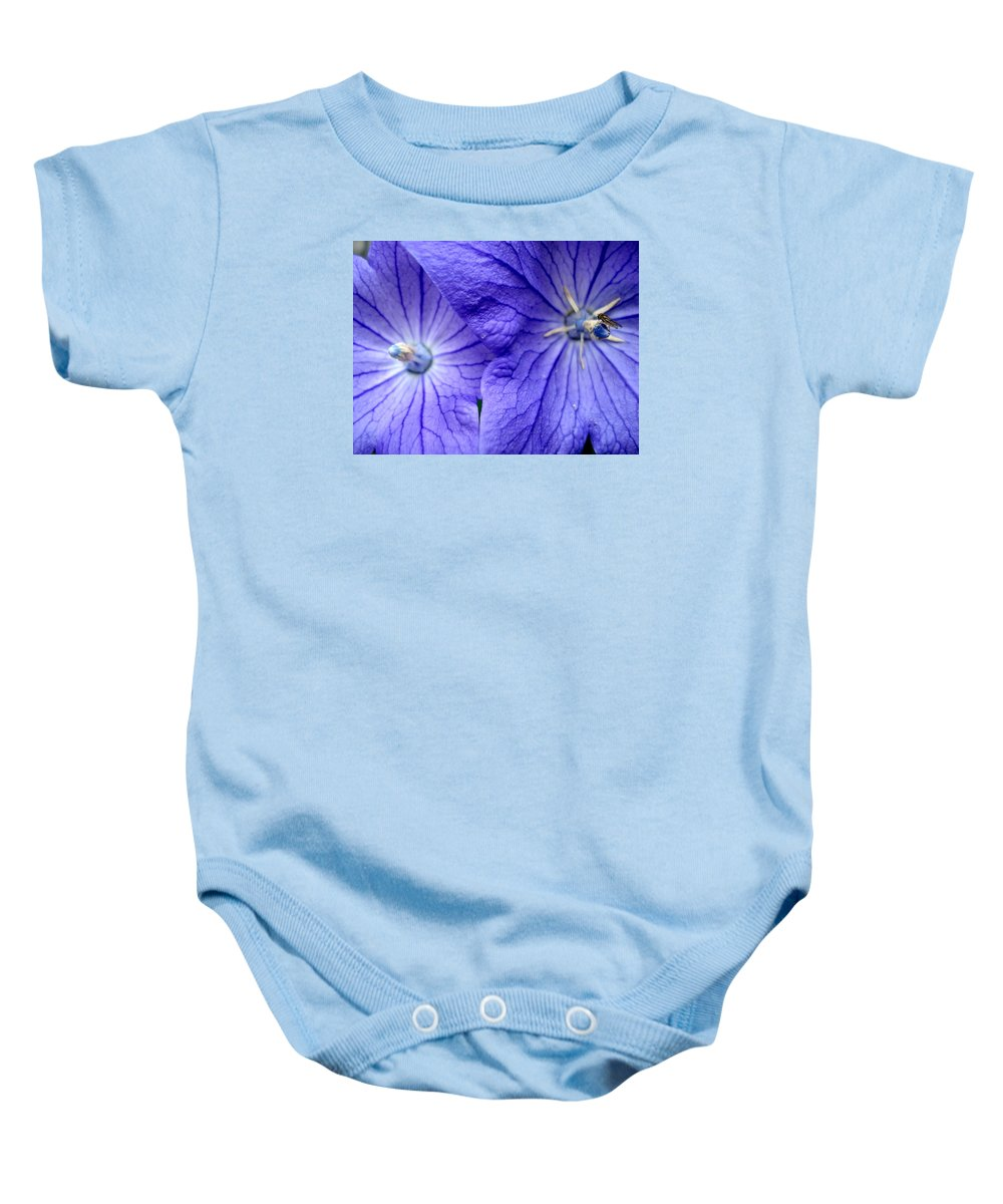 Flowers Baby Onesie featuring the photograph Powder 2 by Nelson F Martinez