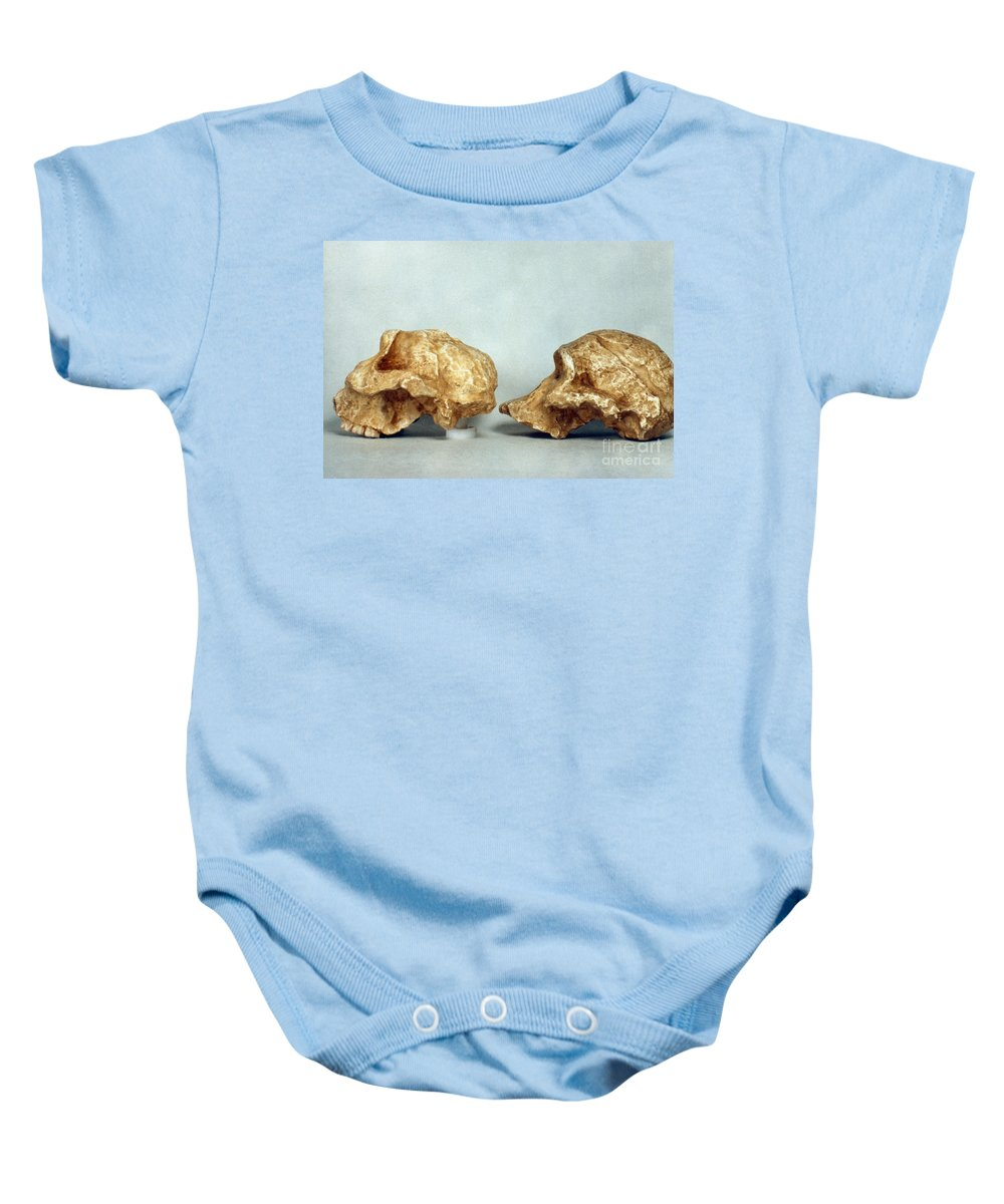 African Baby Onesie featuring the photograph Prehistoric Skulls by Granger