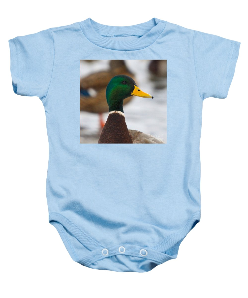 Duck Baby Onesie featuring the photograph Profile by Robert Pearson