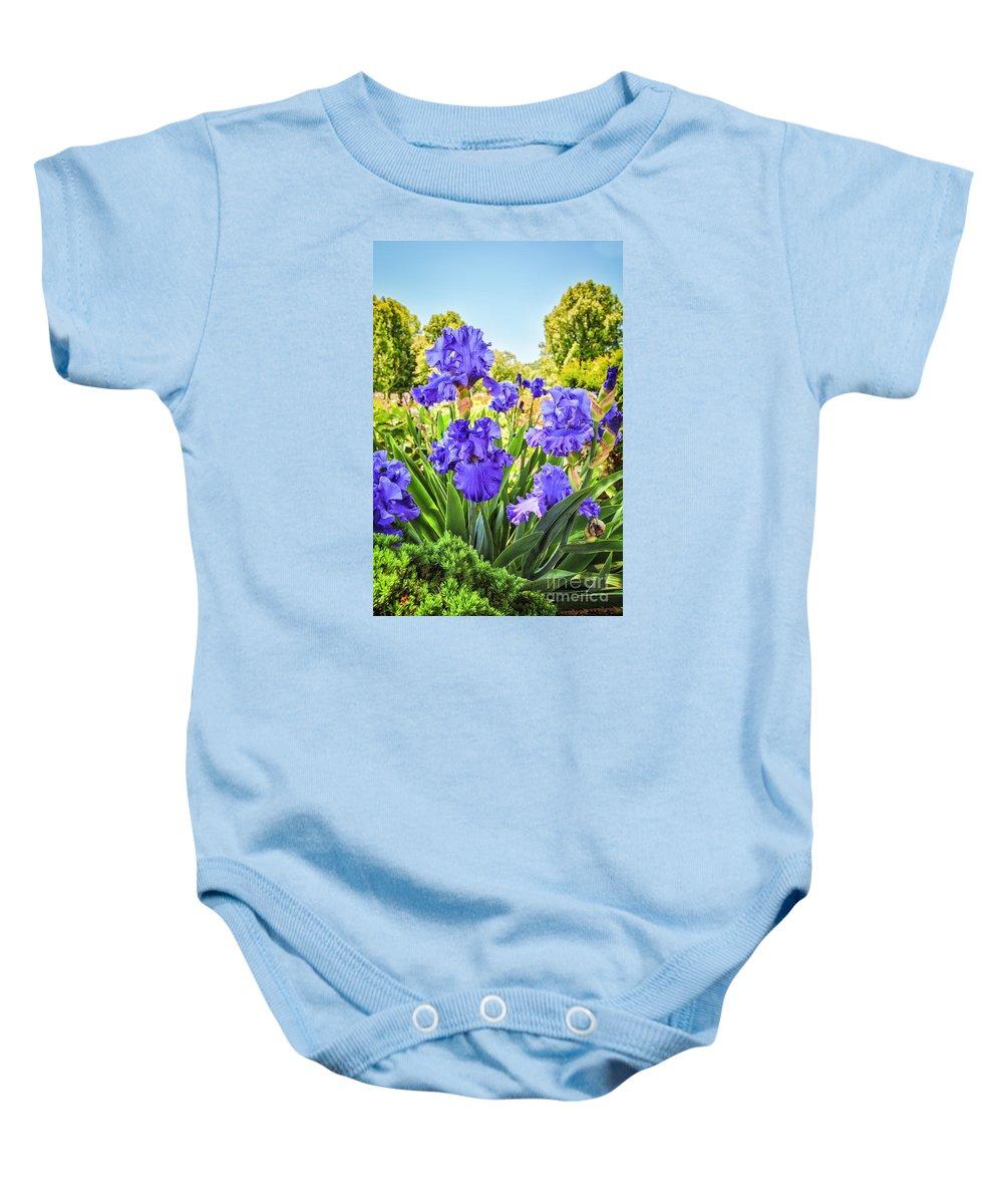 Iridaceae Baby Onesie featuring the photograph Pure Sapphire Iris by Jamie Gray