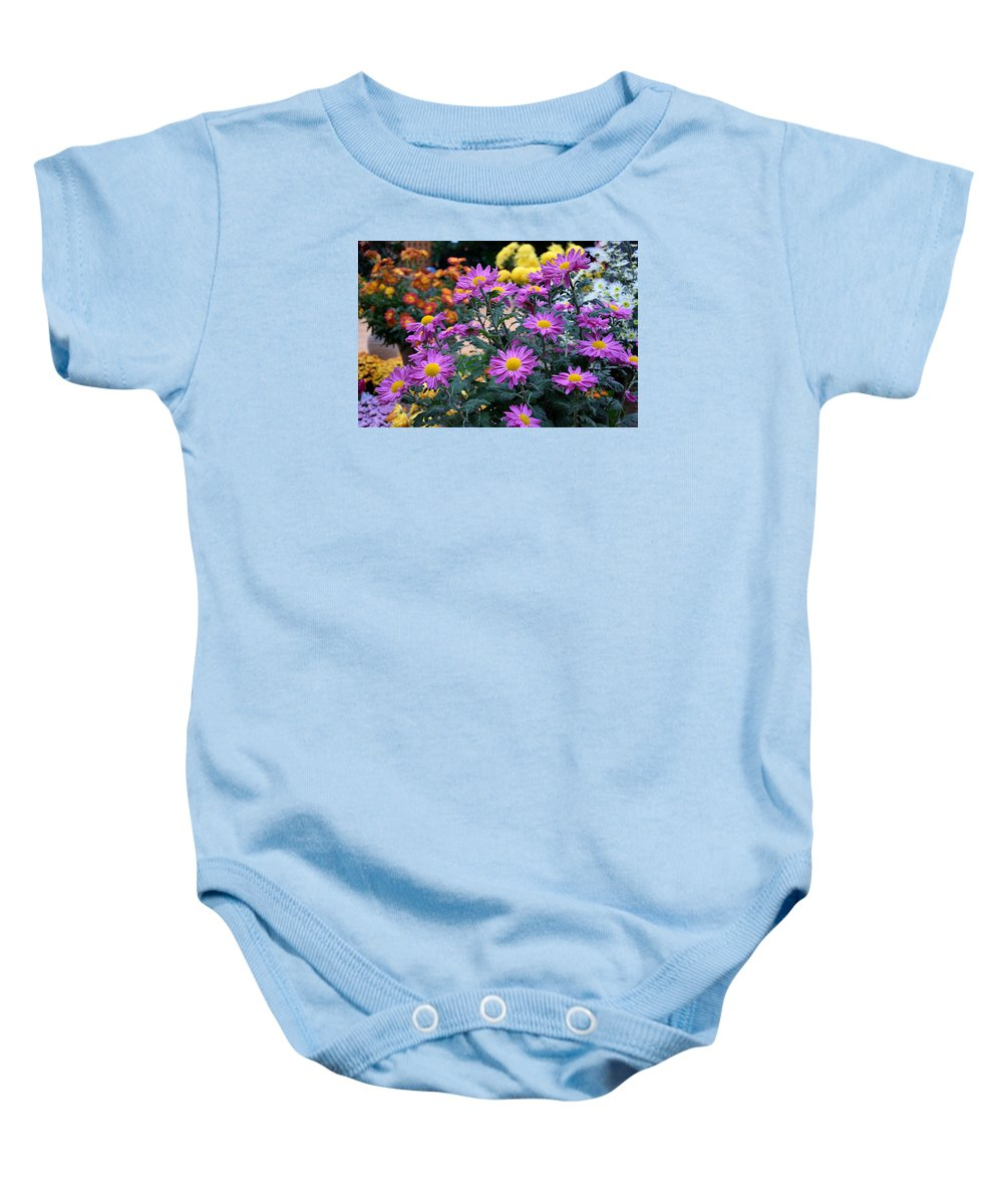 Purple Baby Onesie featuring the photograph Purple In Garden by Camelia C