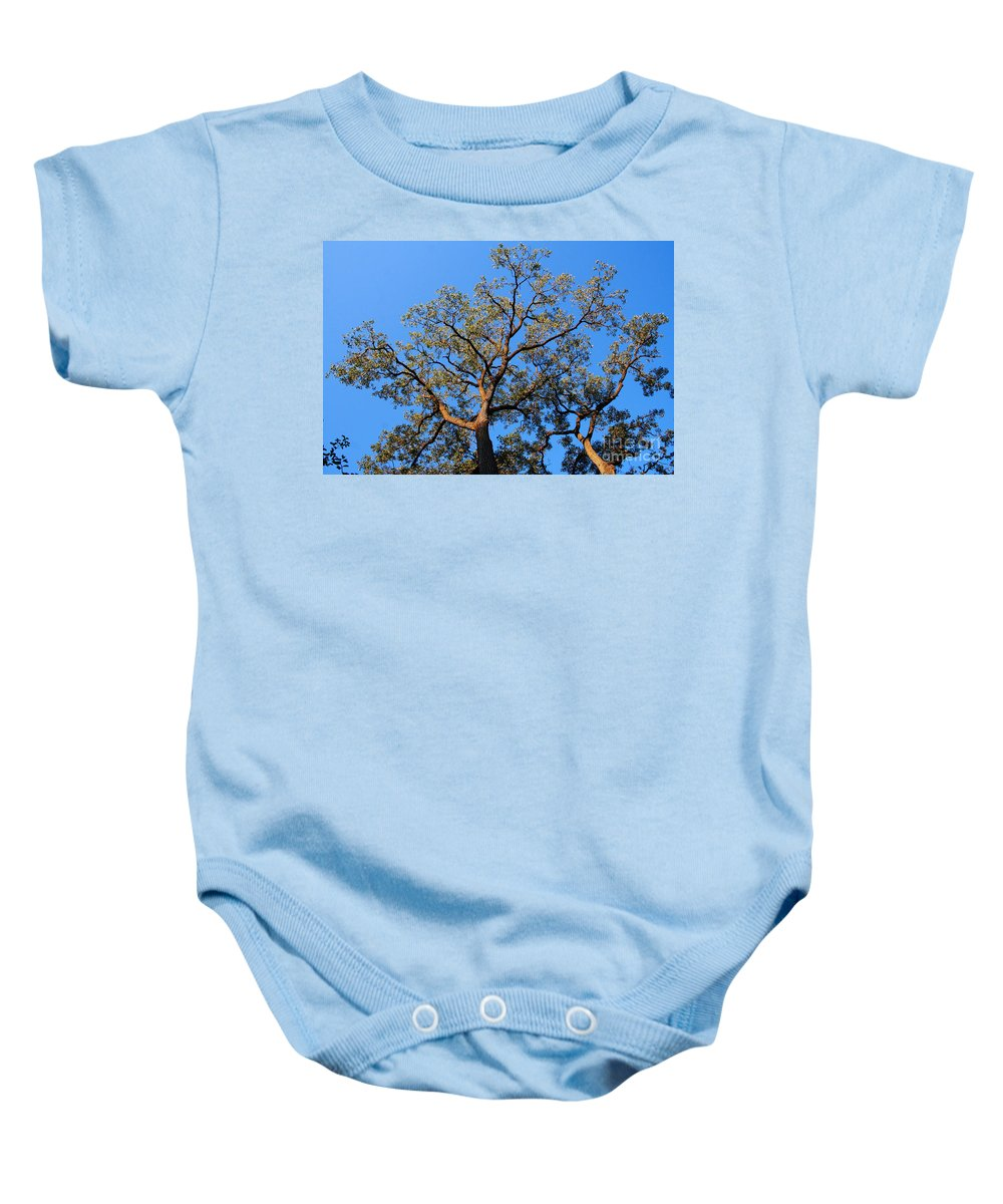 Blue Sky Baby Onesie featuring the photograph Realization by Jamie Lynn