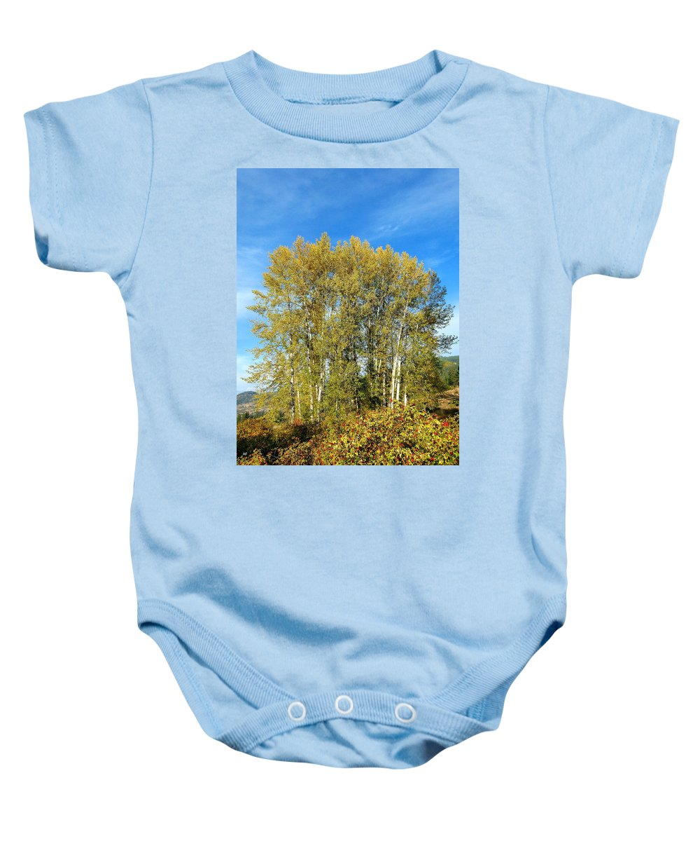 #rosehipsandcottonwoods Baby Onesie featuring the photograph Rosehips And Cottonwoods by Will Borden