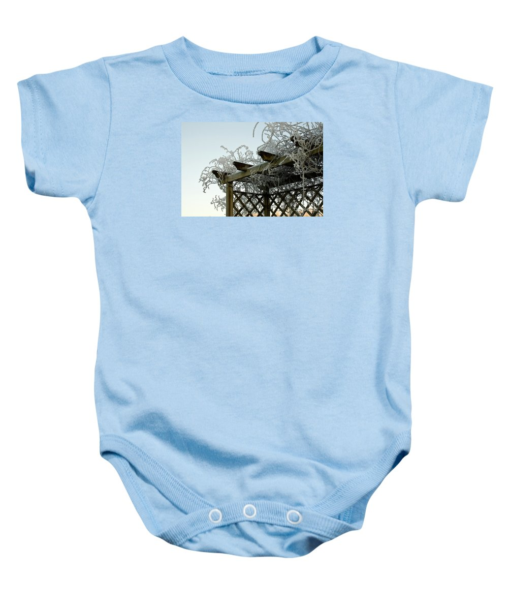 Scottish Hoar Frost Baby Onesie featuring the photograph Scottish Hoar Frost by Jim Macdonald
