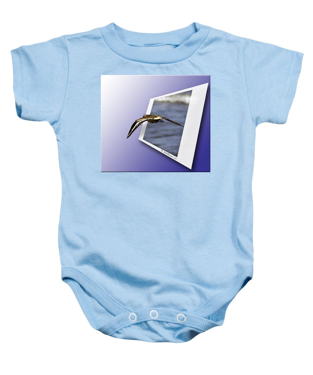 2d Baby Onesie featuring the photograph Shore Bird In Flight by Brian Wallace