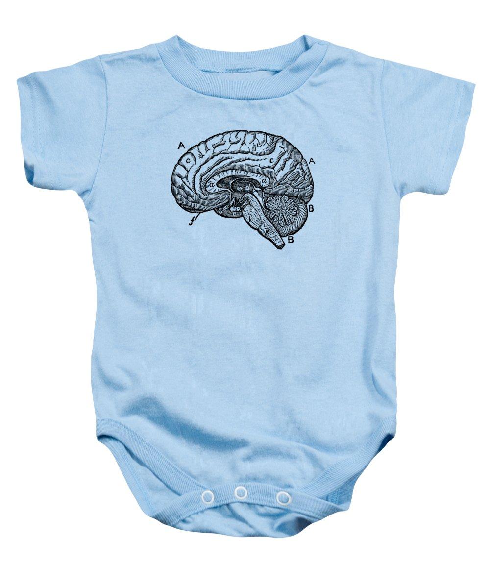 Simple Brain Diagram - Anatomy Poster Baby Onesie