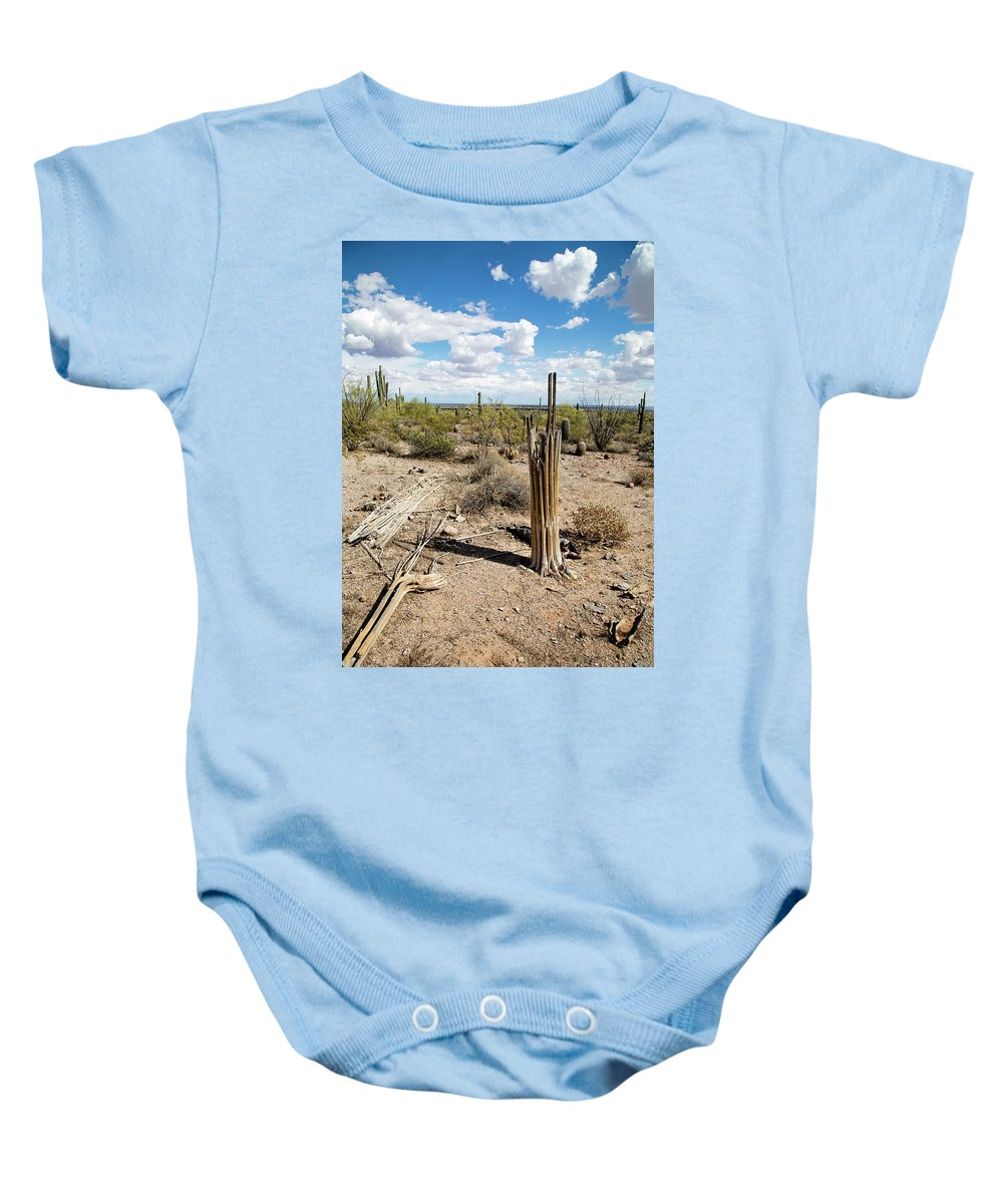 Arizona Baby Onesie featuring the photograph Skeletons Of The Desert by Cathy Franklin