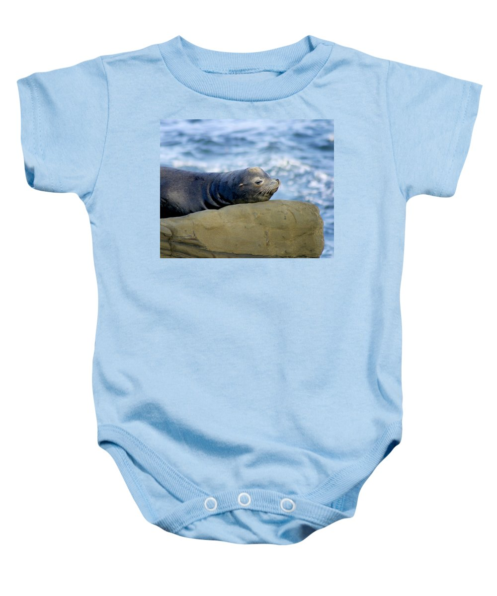 Seal Lion Baby Onesie featuring the photograph Sleeping Sea Lion by Anthony Jones