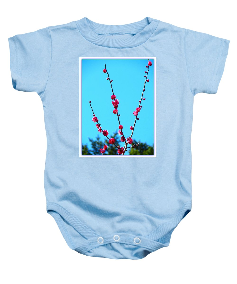 Posters Baby Onesie featuring the photograph Spring Blooms by Sonali Gangane