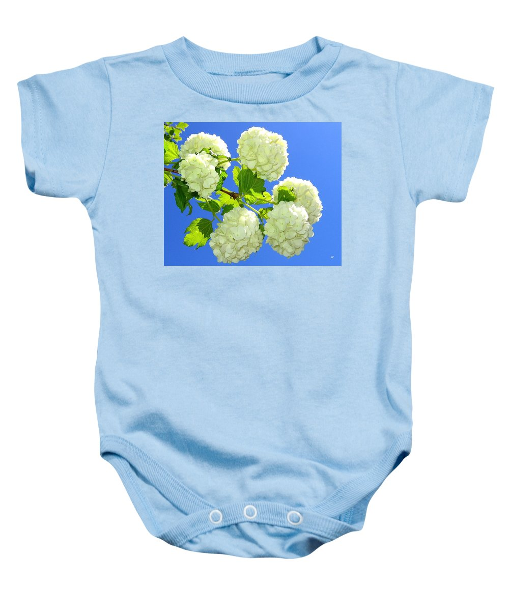 Snowballs Baby Onesie featuring the photograph Spring Snowballs by Will Borden