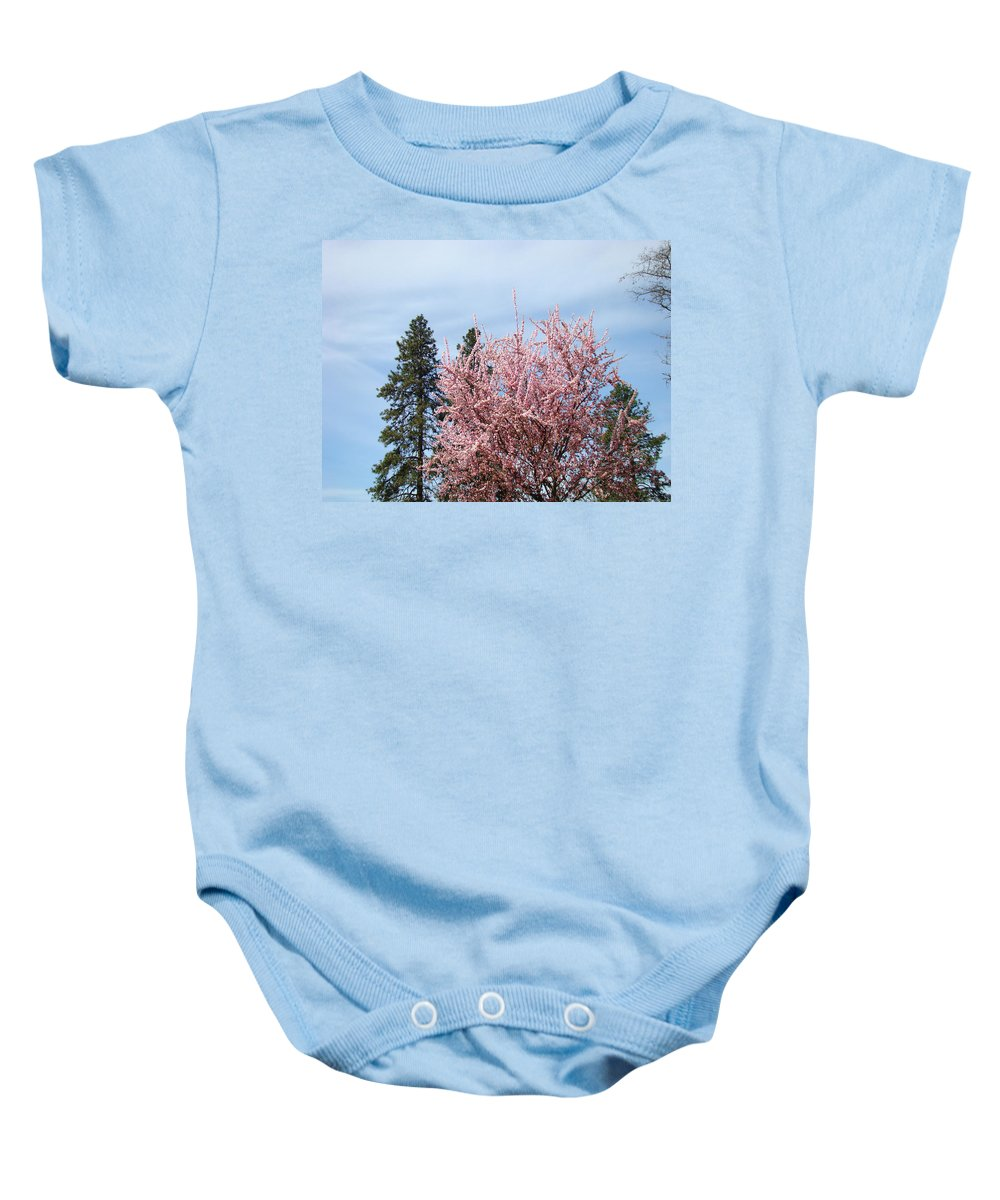 Trees Baby Onesie featuring the photograph Spring Trees Bossoming Landscape Art Prints Pink Blossoms Clouds Sky by Baslee Troutman