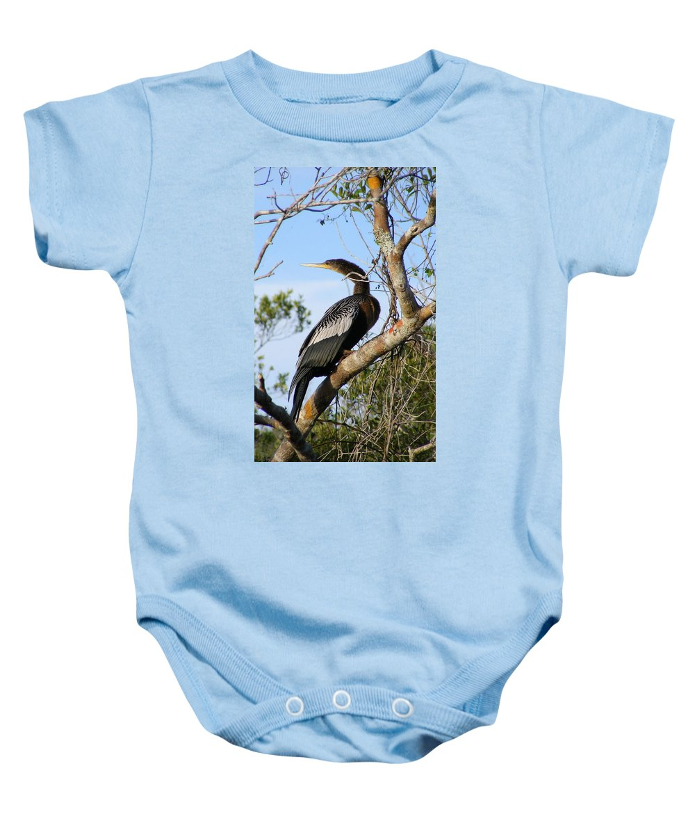 Bird Baby Onesie featuring the photograph Strike A Pose by Ed Smith