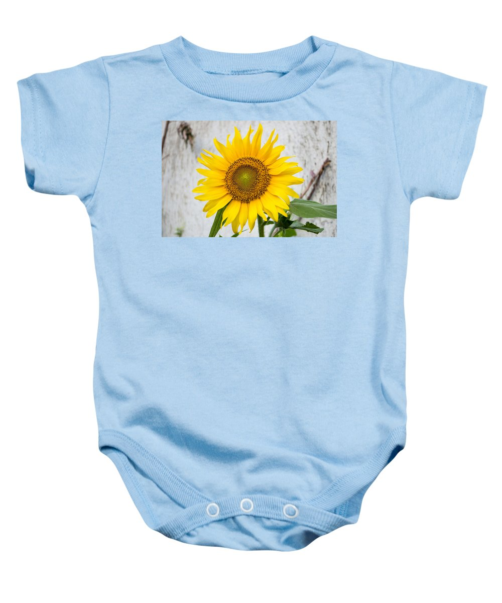 Nature Flower Baby Onesie featuring the photograph Sunflower by Sainuddeen Alanthi