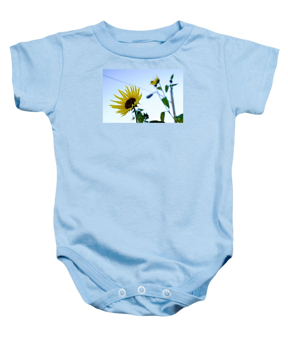 Sunflower Baby Onesie featuring the photograph Sunflowers In Fall by Mike Morrison